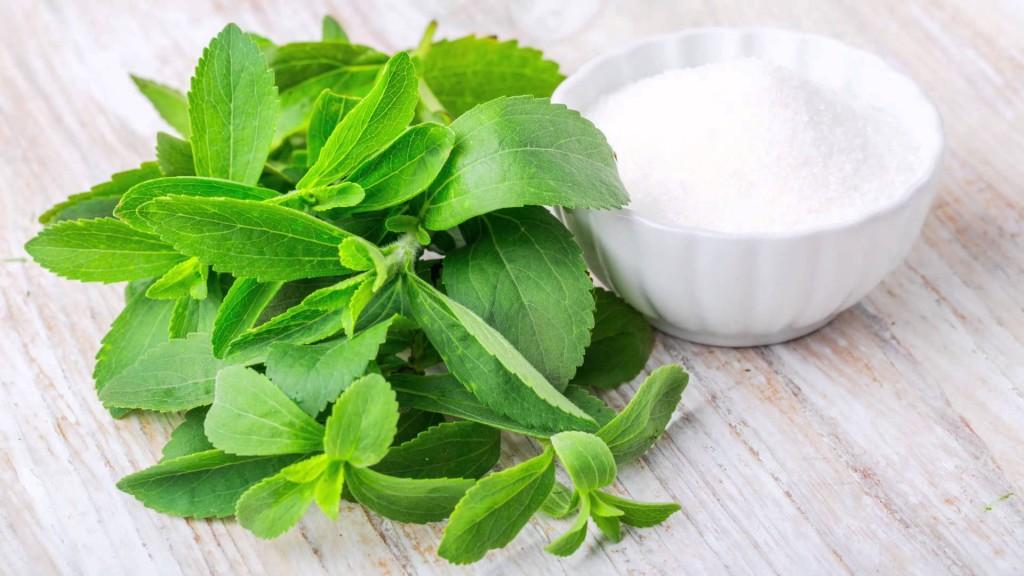 Hoe gezond is gezond zoet? Stevia