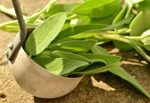 De beste kruiden tegen menopauzale klachten