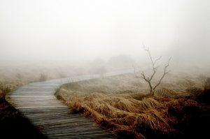 Koud en donker? Hier zijn mijn 4 favoriete tips om herfst en winter goed door te komen.